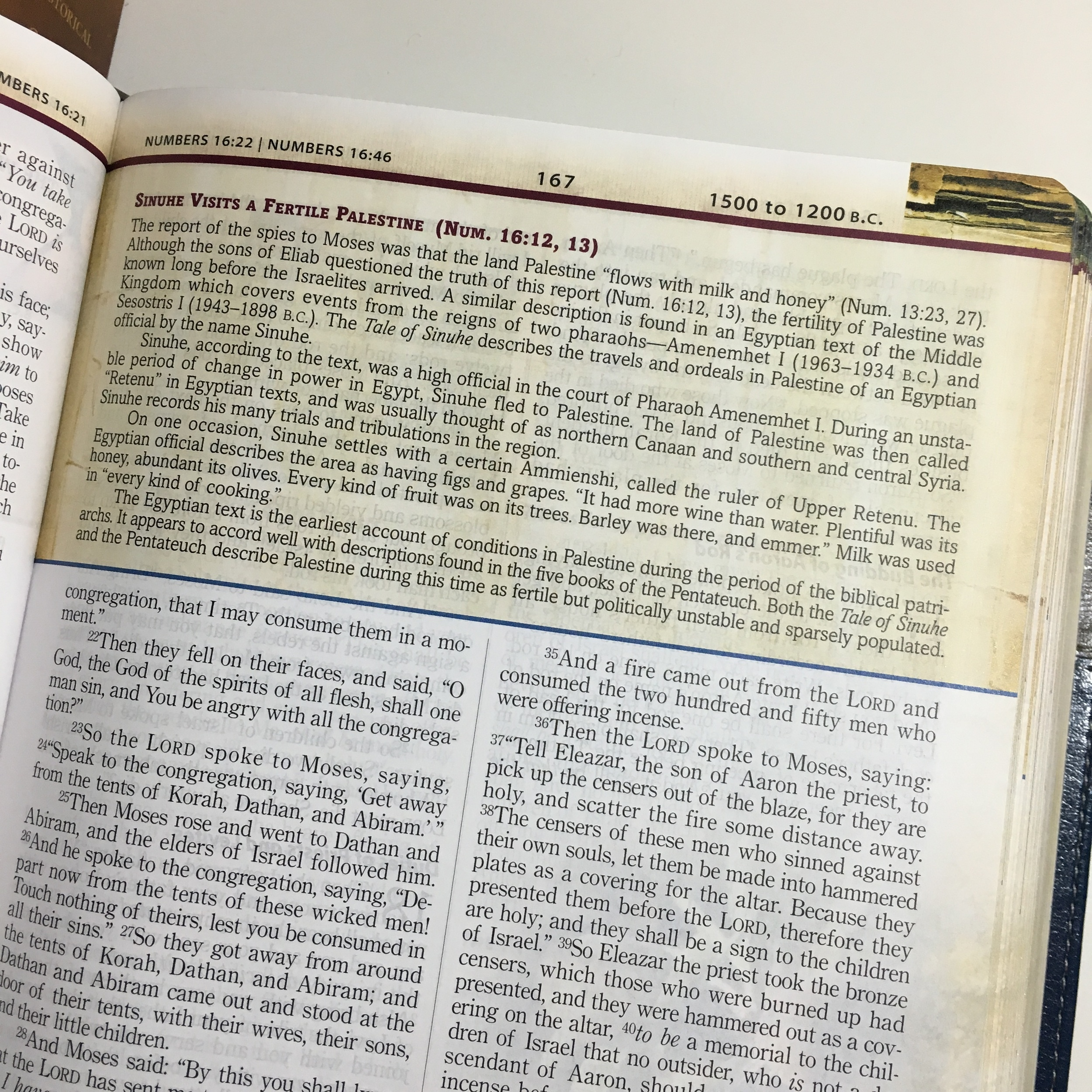 NKJV, The Chronological Study Bible // REVIEW — rachel a  dawson