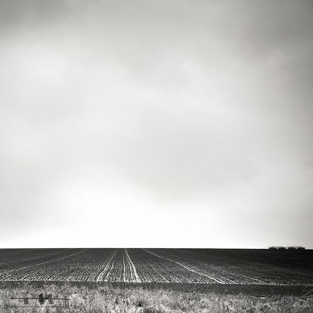 Horizon: Three, 2014