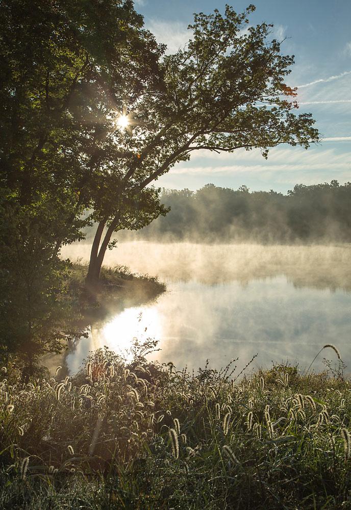 Morning on Muntzel's Pond, 2013