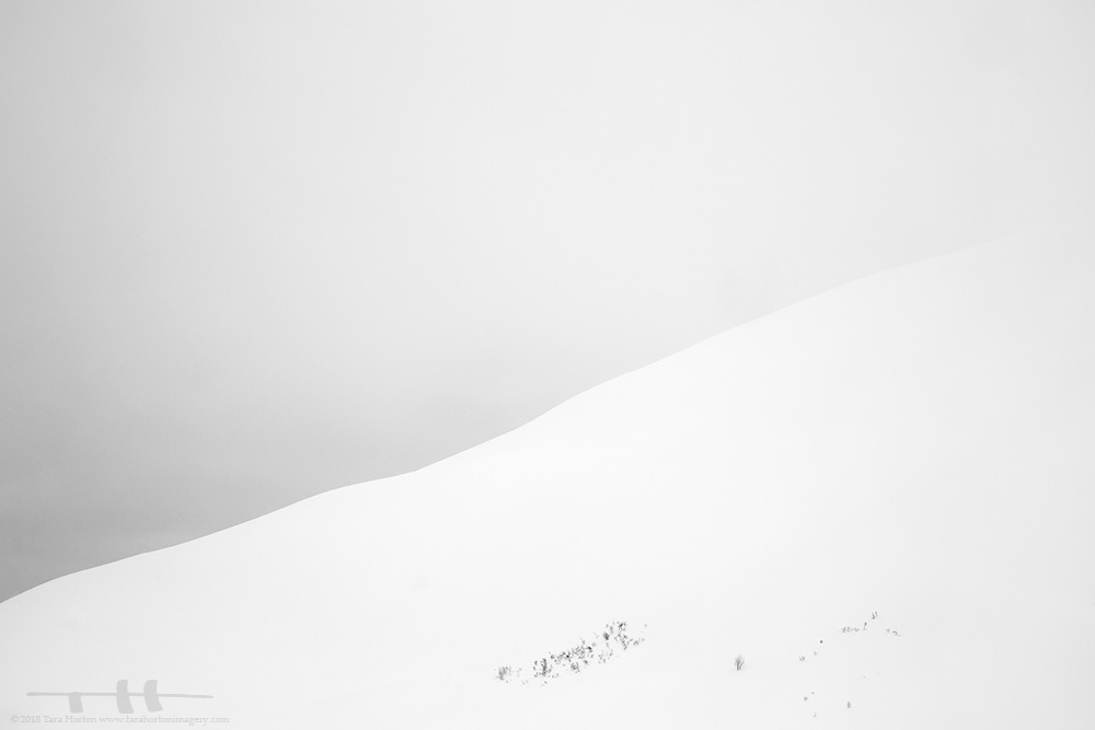 ©-2018-tara-horton-gradient-at-hatcher-pass.jpg