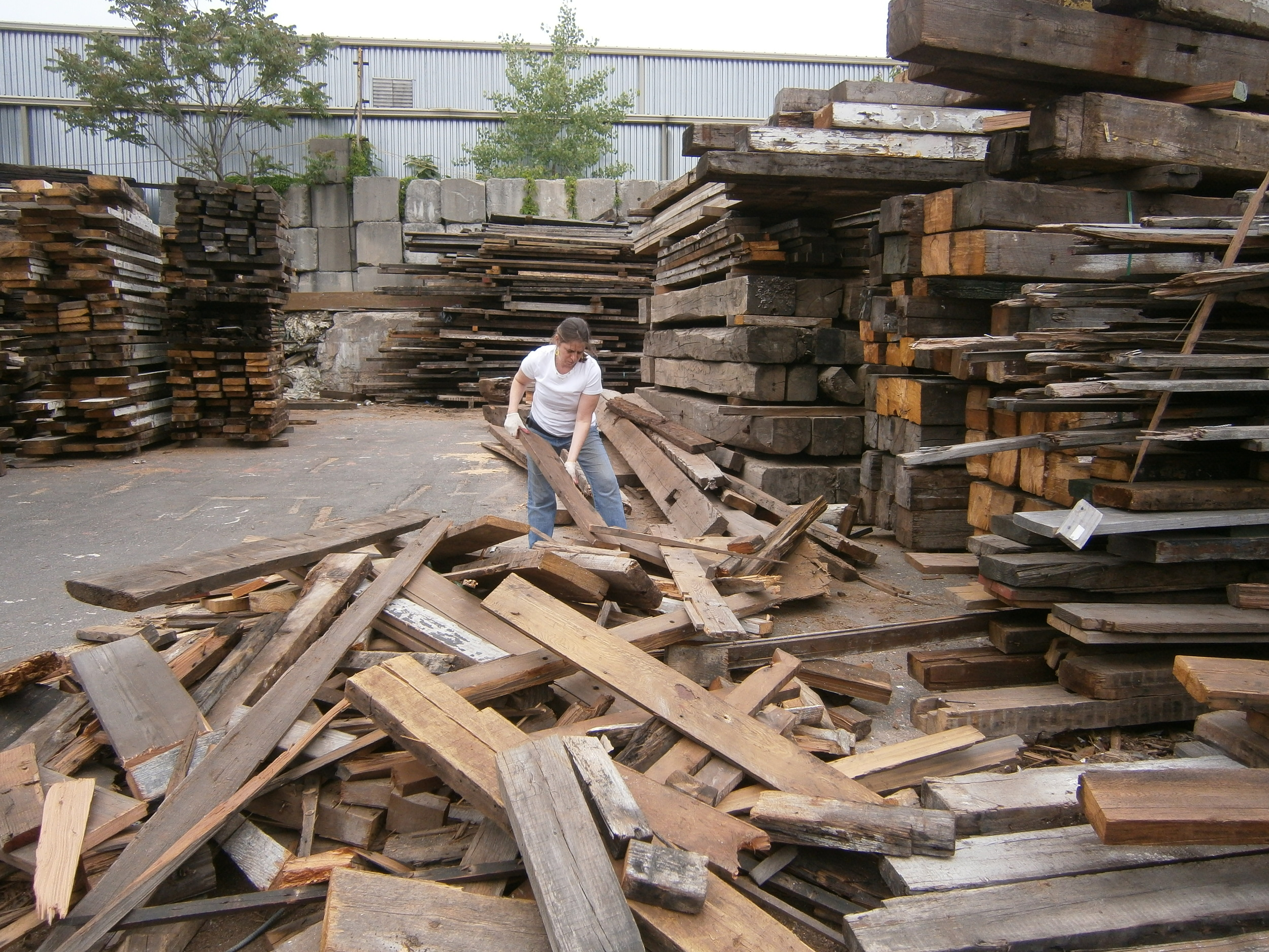 Yasmin Gur working at the MFine Lumber collecting wood.