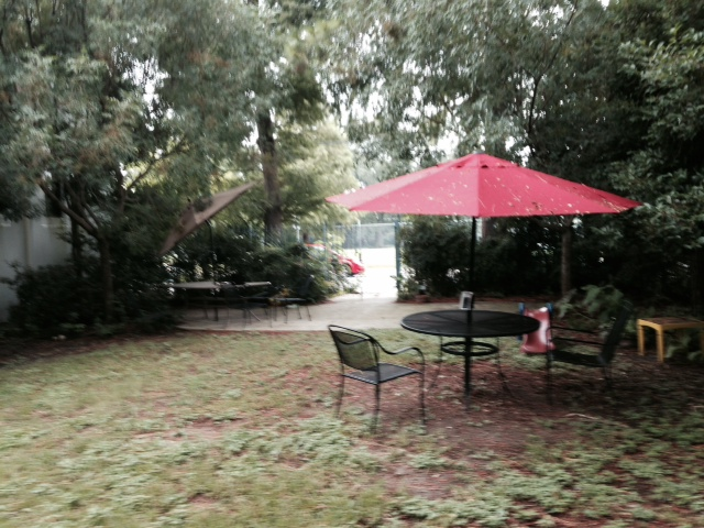 The Alvar Library Garden (chairs and umbrella donated by the Jamie Kanzler Foundation).