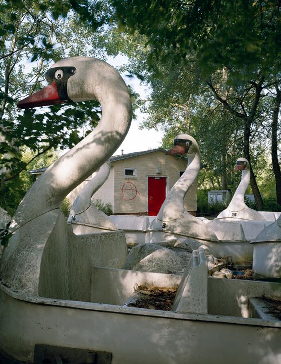 Swan Army,  2004.