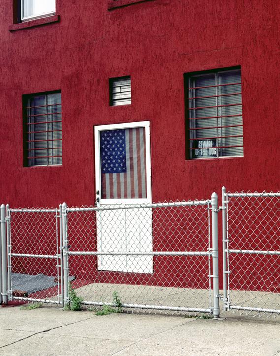 Beware of the Dog, Brooklyn, NY,  2002