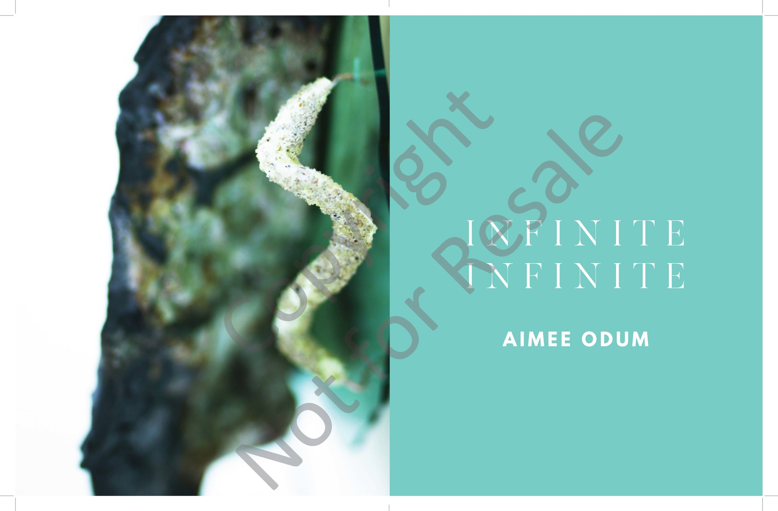Odum_Aimee_A+L_Catalogue_Watermark_Page_02.jpg