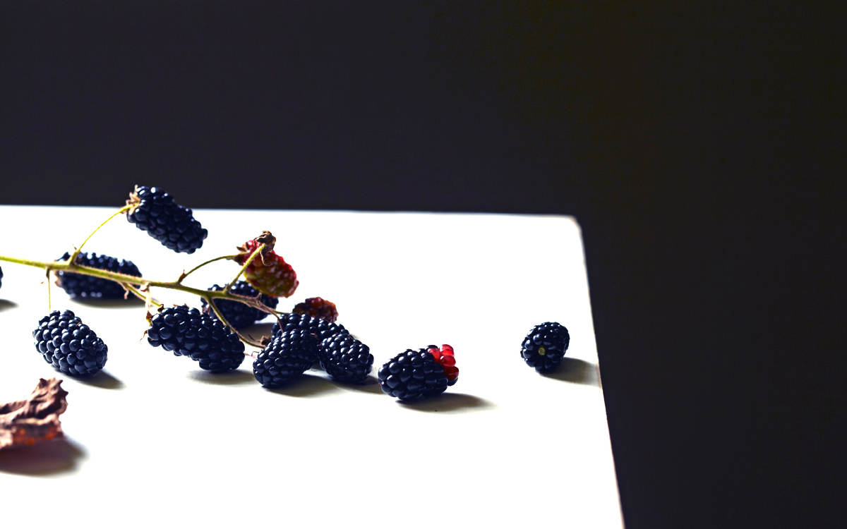late_summer_berries_3.jpg