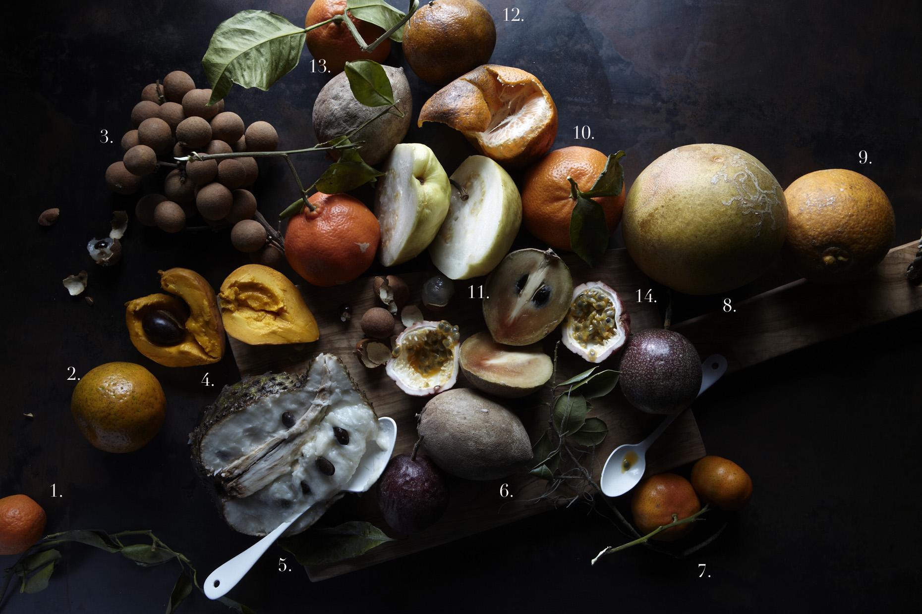 1. Satsuma  2. Chinese Honey  3. Longans  4. Canestel (Egg fruit)  5. Guanabana (Sour Sop)  6. Sapodilla (chocolate fruit)  7. Kejaja Wild  8.Ruby blush  9. Newhall Navel (a red fruited orange)  10. orlando tangelo  11. lemon guava  12. chinese honey  13. murcott honey  14. passion fruit