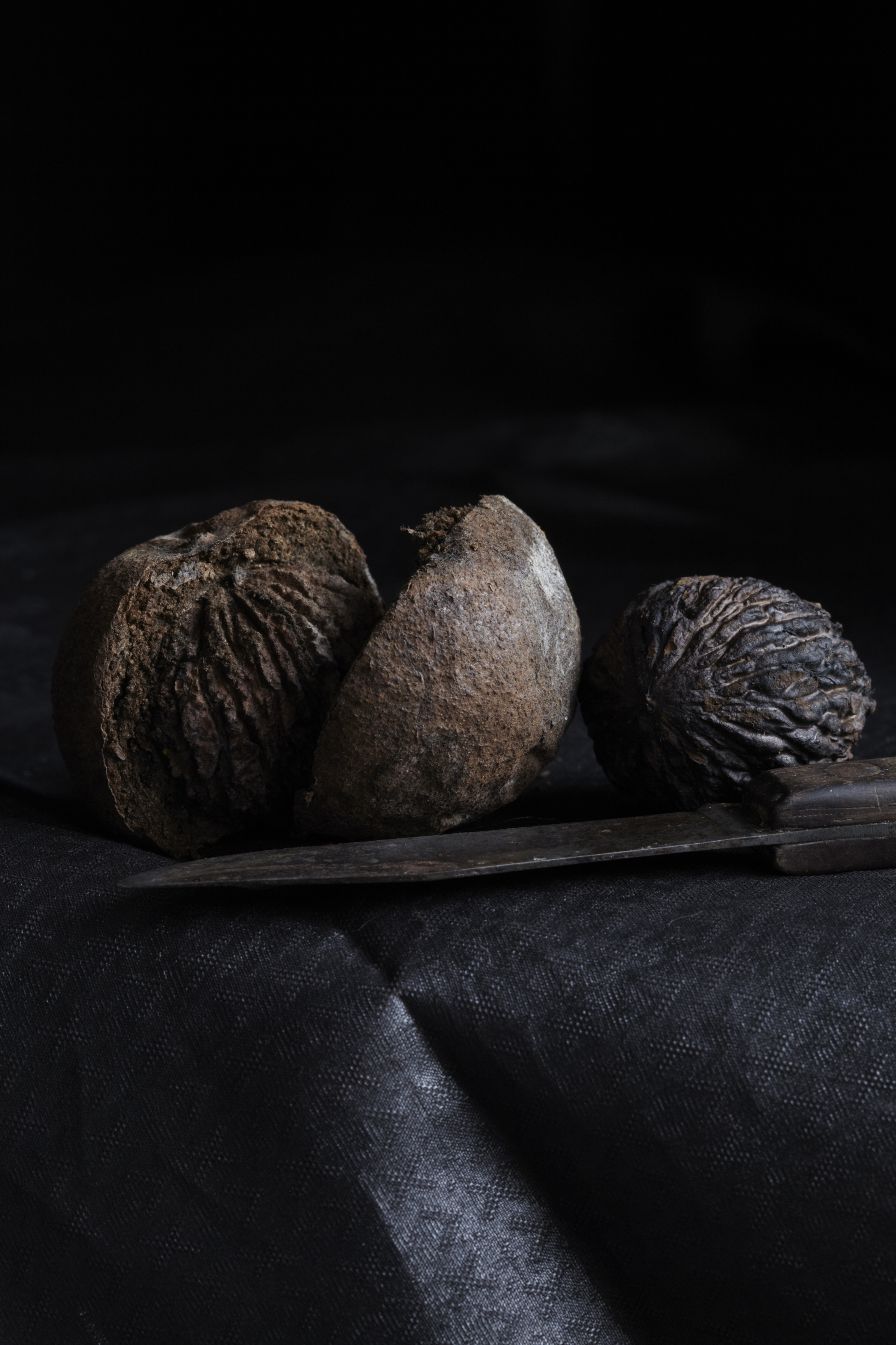wild black walnuts