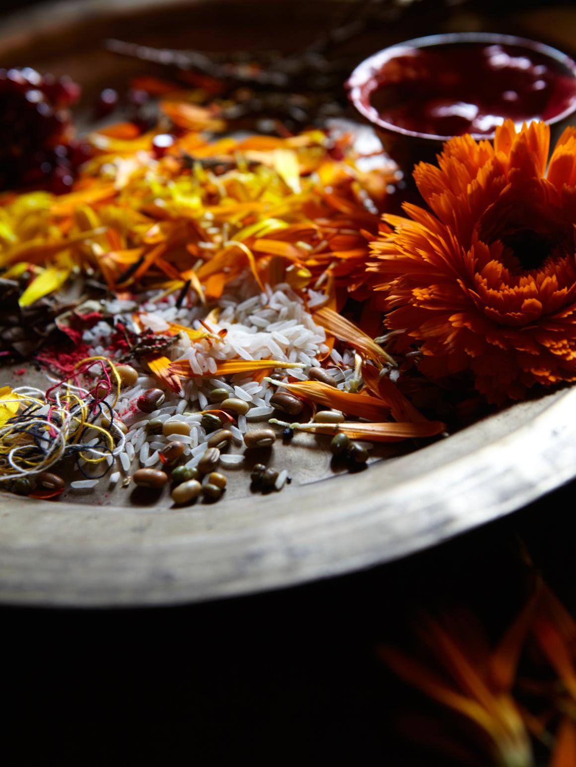 130204_CNT_Ganesh_Offering_Plate_2907.jpg