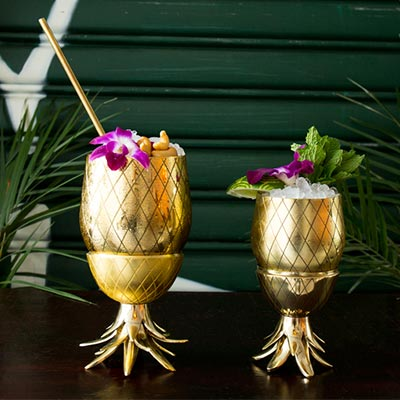 Web-Category-Tiki-Cocktail-Gear-Glasses-Pineapple-Co-W-P-Design-Best-Bar-Glasses-Gift-Idea.jpg