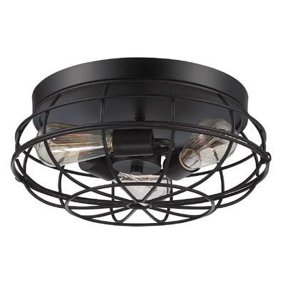 Trent-Austin-Design%C2%AE-Evergreen-3-Light-Flush-Mount.jpg