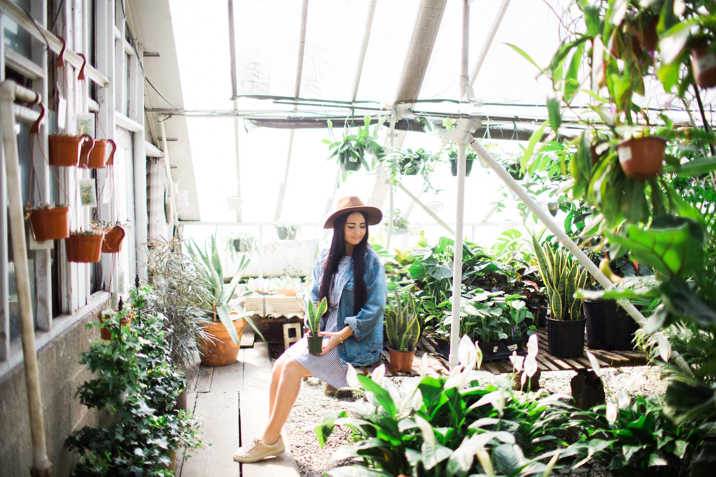 emilygreenhouseshoot-42.jpg