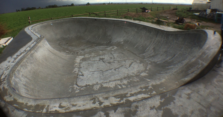 joeys-bowl-2.jpg