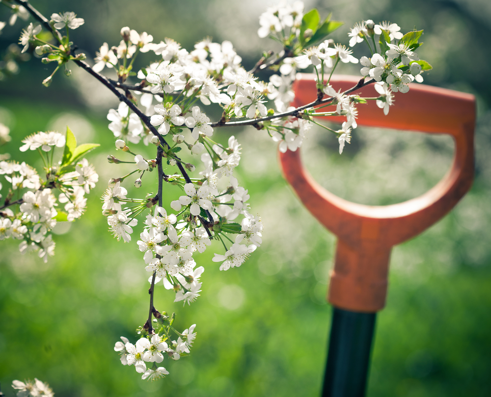 Spring-Gardening.jpg
