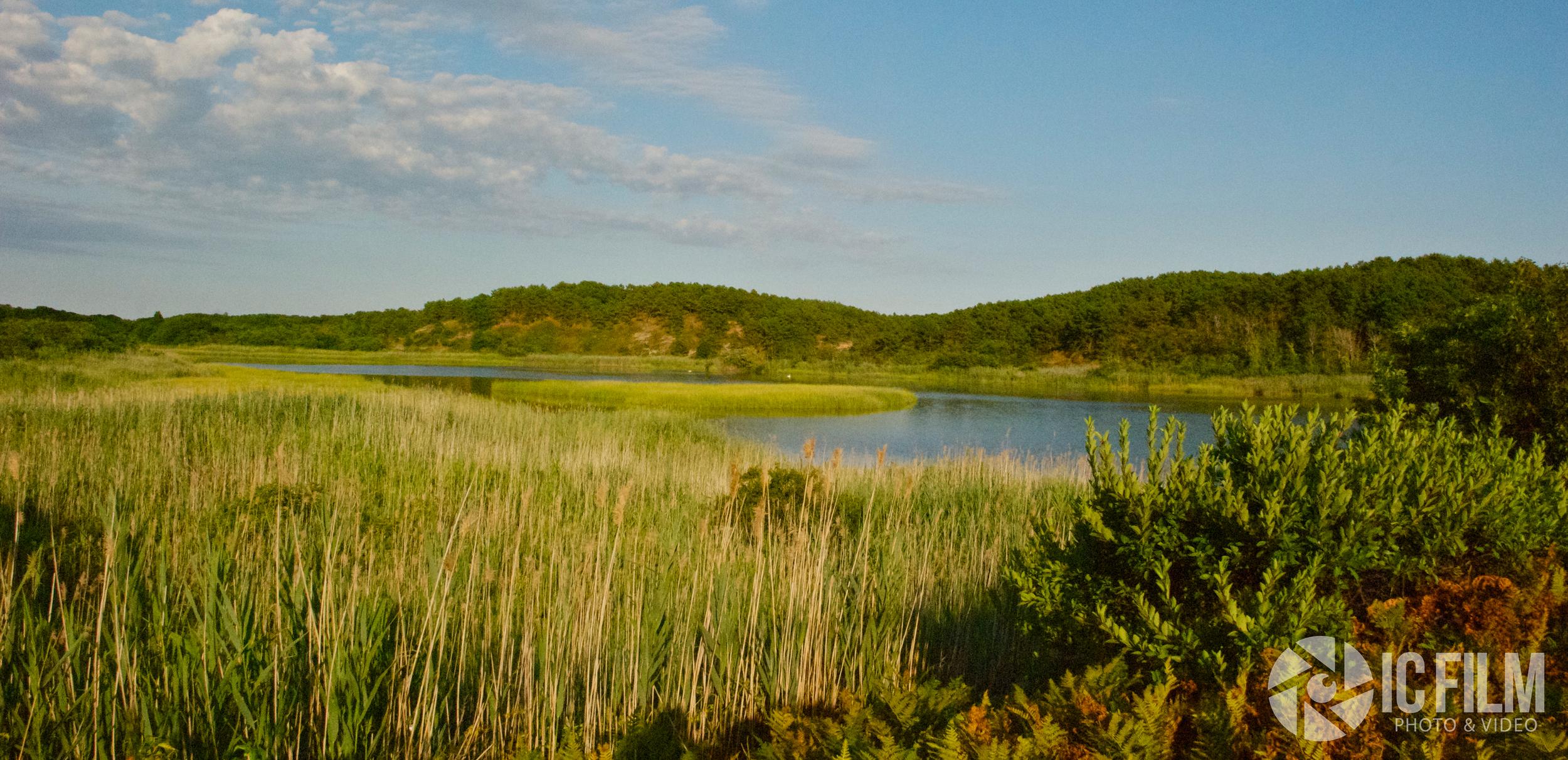 Cape landscape.jpg