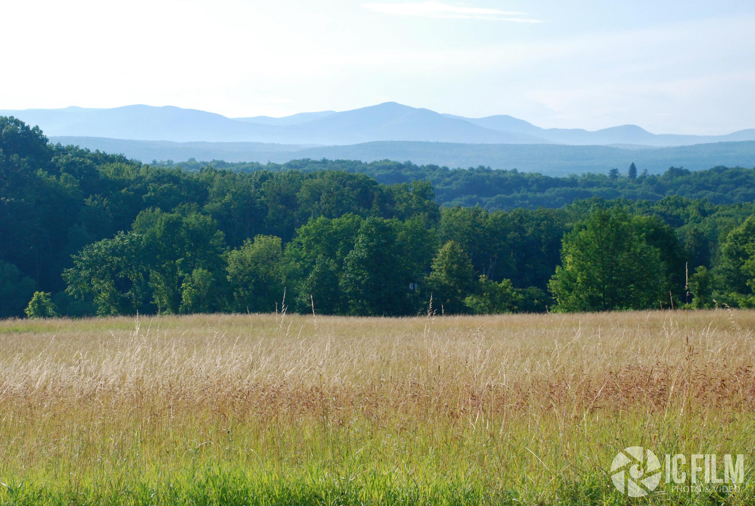 HV Landscape2.jpg