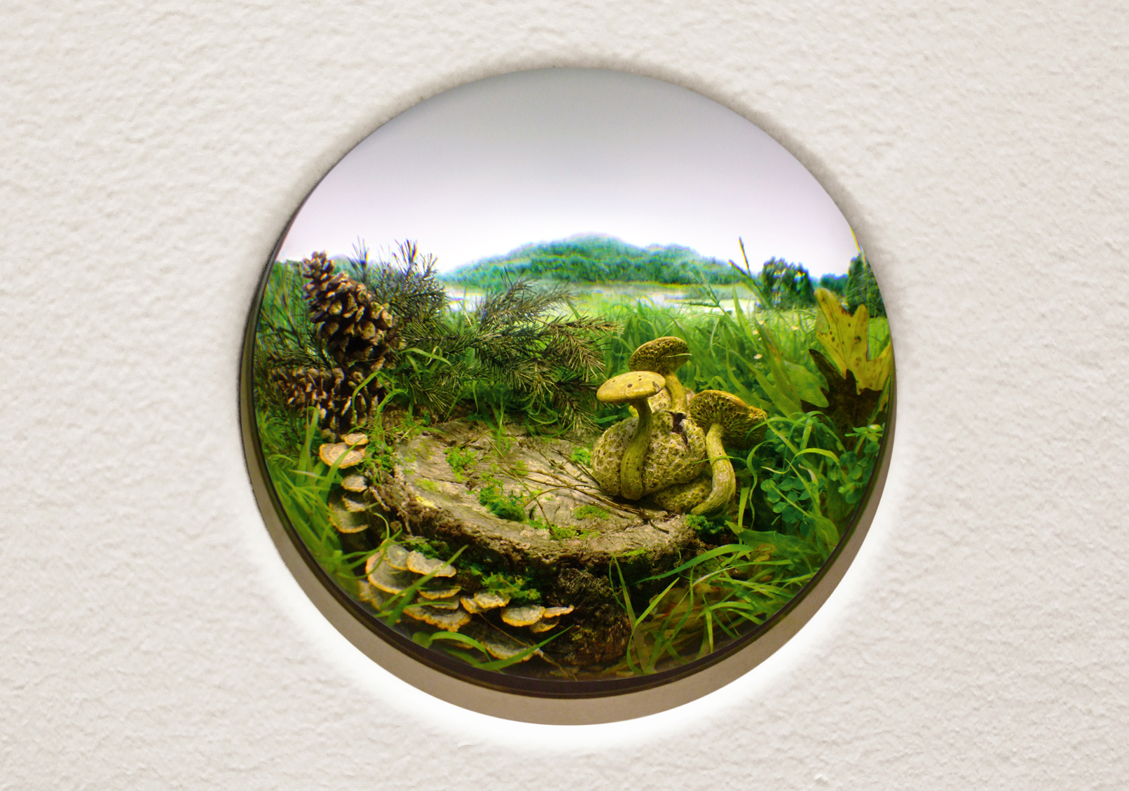 Patrick Jacobs,   Parasitic Bolete with Pine Cones , 2014,diorama viewed through 2.75 in window,12.75 x 18.50 x 11.5 in.,Styrene, acrylic, cast neoprene, paper, ash,talc, starch, polyurethane foam, acrylite,vinyl film, wood, steel, lighting, and BK7 glass, artwork and image courtesy of the artist