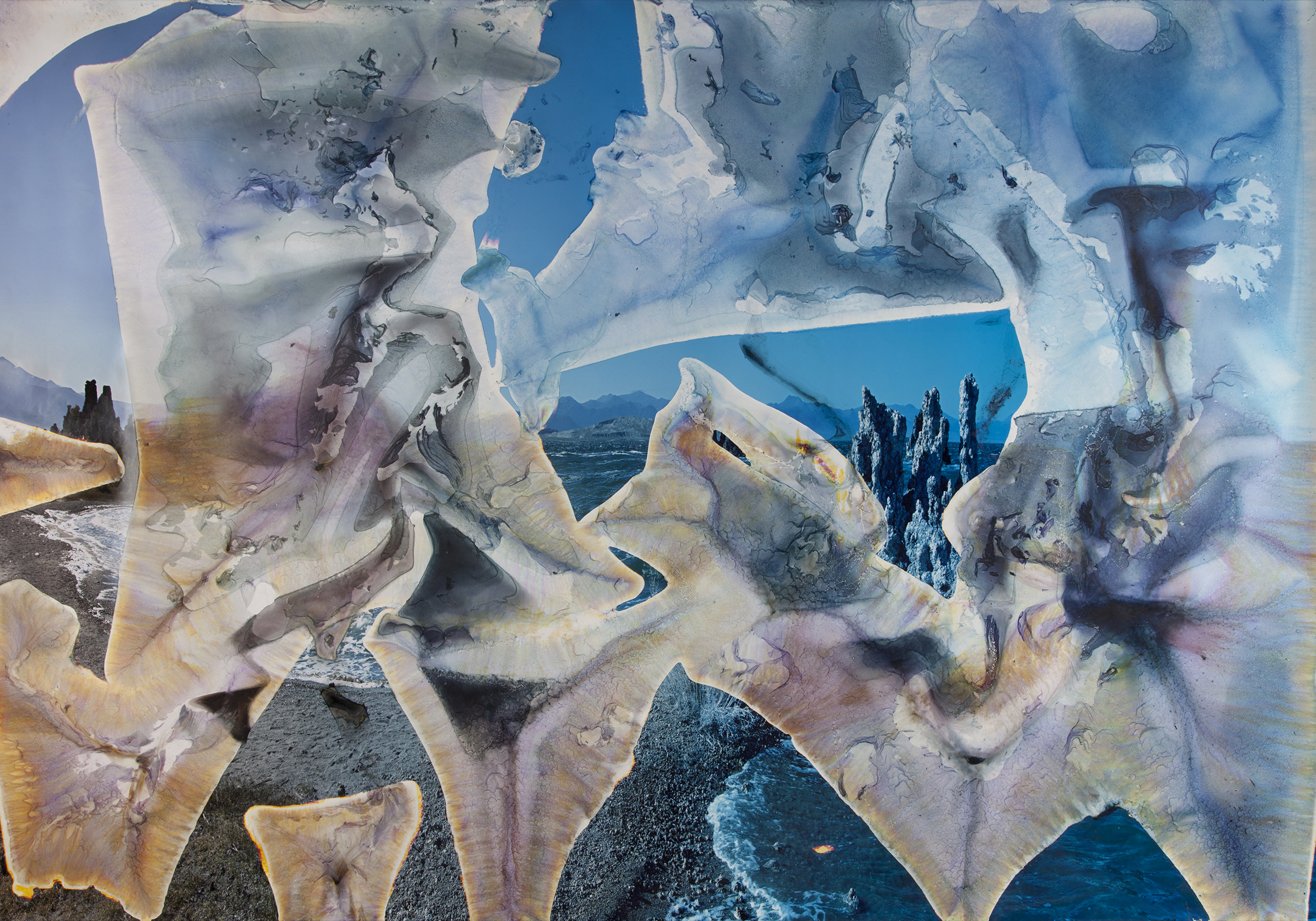Matthew Brandt,  Mono Lake CA B4 , 2012,c-print soaked in Mono Lake water 72 x 105 inches,Collection ofMeredith and Brother Rutter,image courtesy of the artist and M+B Gallery, Los Angeles,