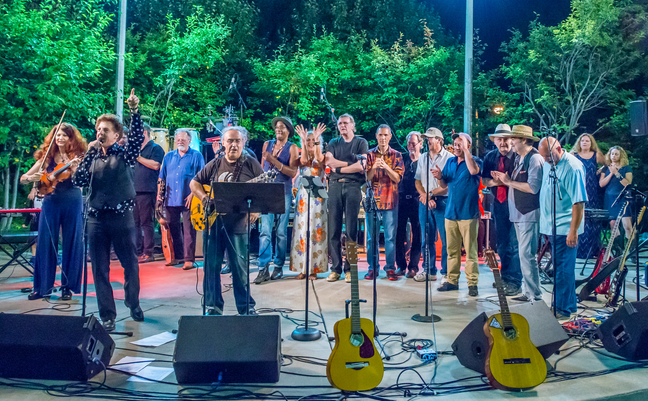 The Ensemble Finale / Salute to the Music of Bob Dylan / The Veterans' Memorial Wolfe Park Amphitheater / St. Louis Park, Minnesota / August 9th, 2014 / Photo by Don Olson