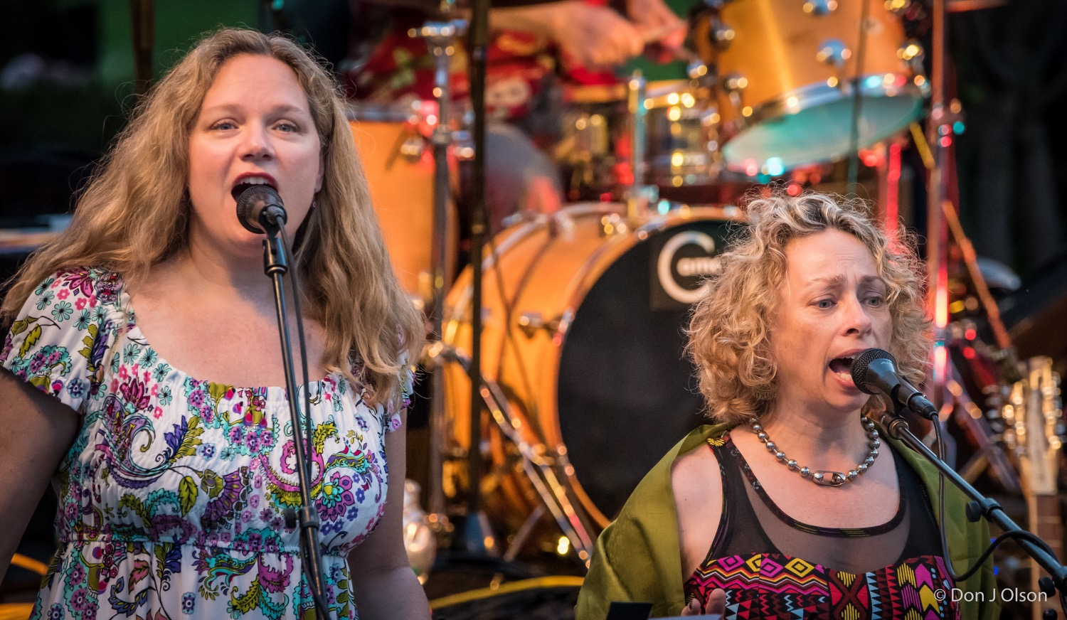 Colleen O and Edie Rae / The Veterans' Memorial Wolfe Park Amphitheater / St. Louis Park, Minnesota / August 1st, 2015