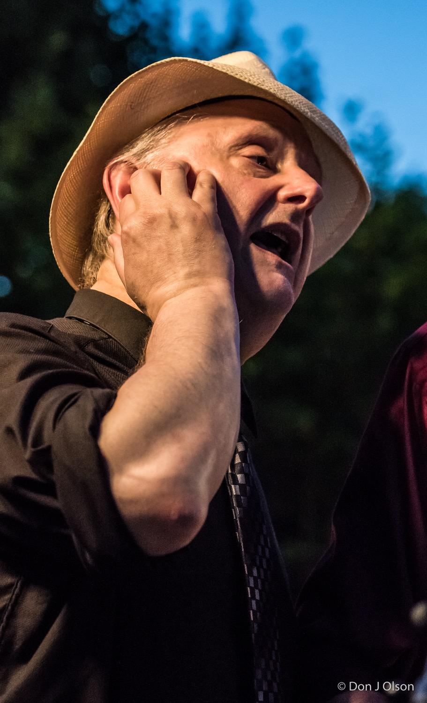 Arne Fogel / The Veterans' Memorial Wolfe Park Amphitheater / St. Louis Park, Minnesota / August 1st, 2015