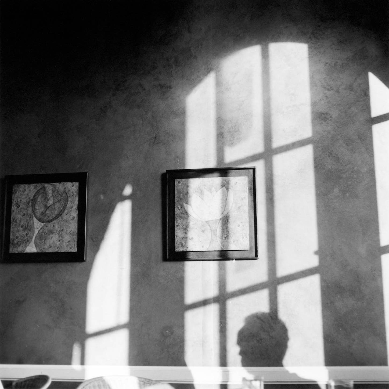 window shadow.jpg