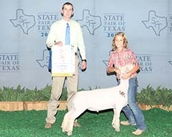 2012 Champion Southdown at the State Fair of Texas        Shown by the Crenwelge Family