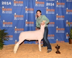 2014 First Place Heavy Weight Finewool at the Houston Livestock Show & Rodeo   Shown by Monaco Schmidt