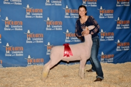 2015 2nd Place Middle at the Houston Livestock Show and Rodeo   Shown by Monaco Schmidt