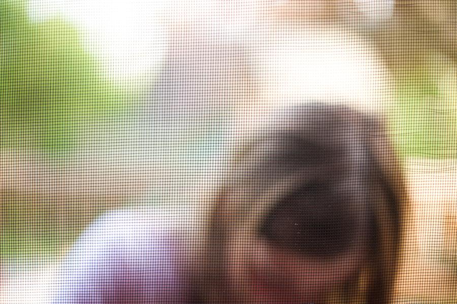 Screen-018.jpg