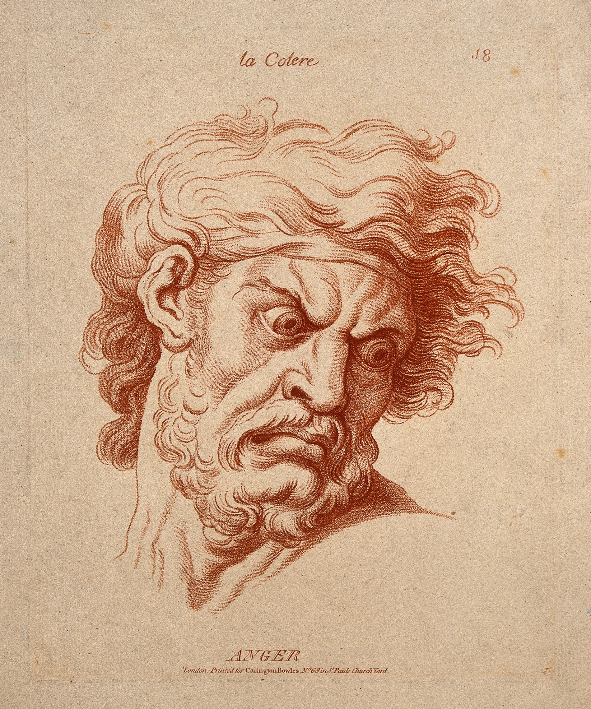 The_face_of_a_bearded_man_expressing_anger._Etching_in_the_c_Wellcome_V0009342.jpg
