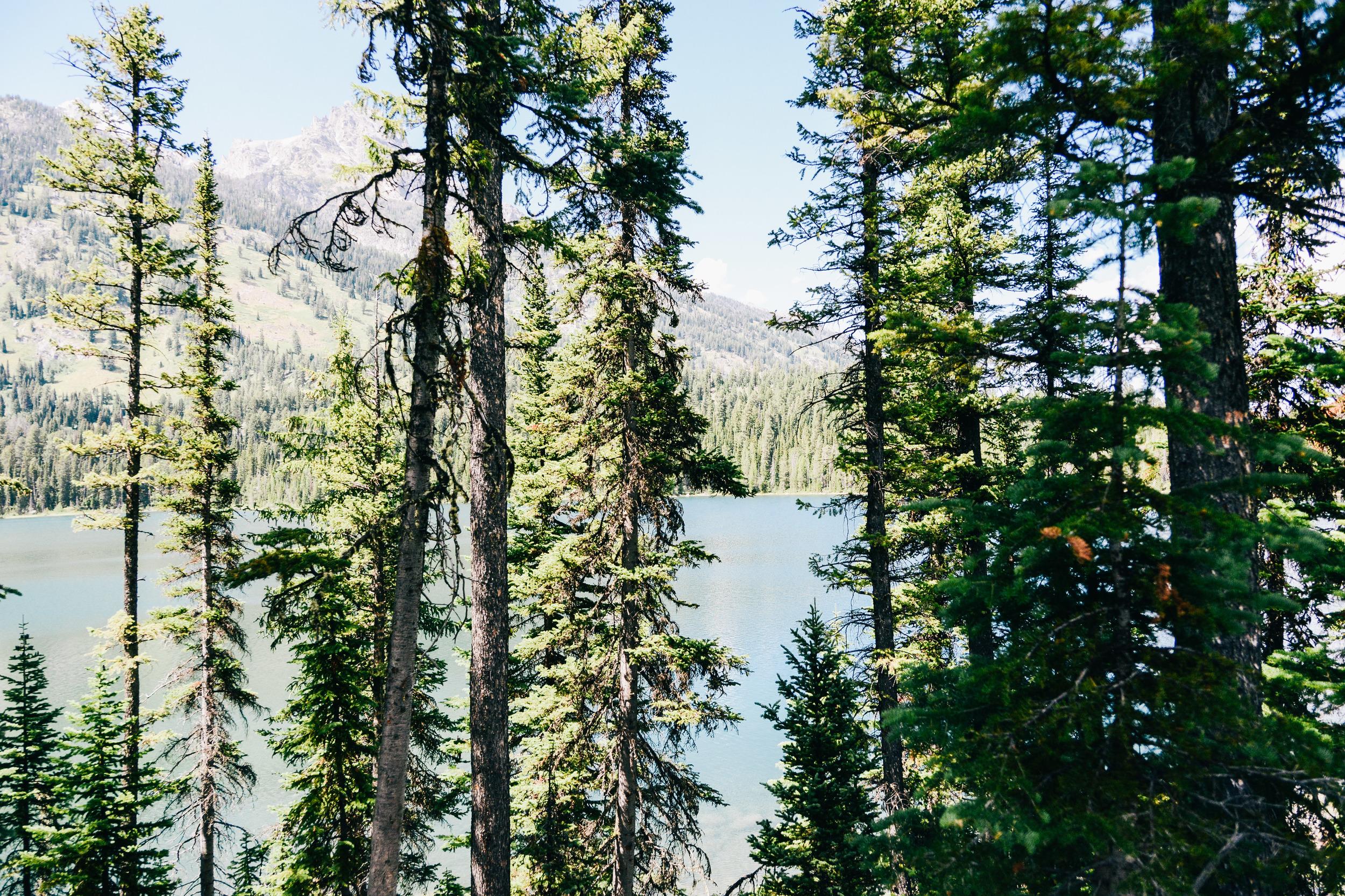 Wyoming-48.jpg