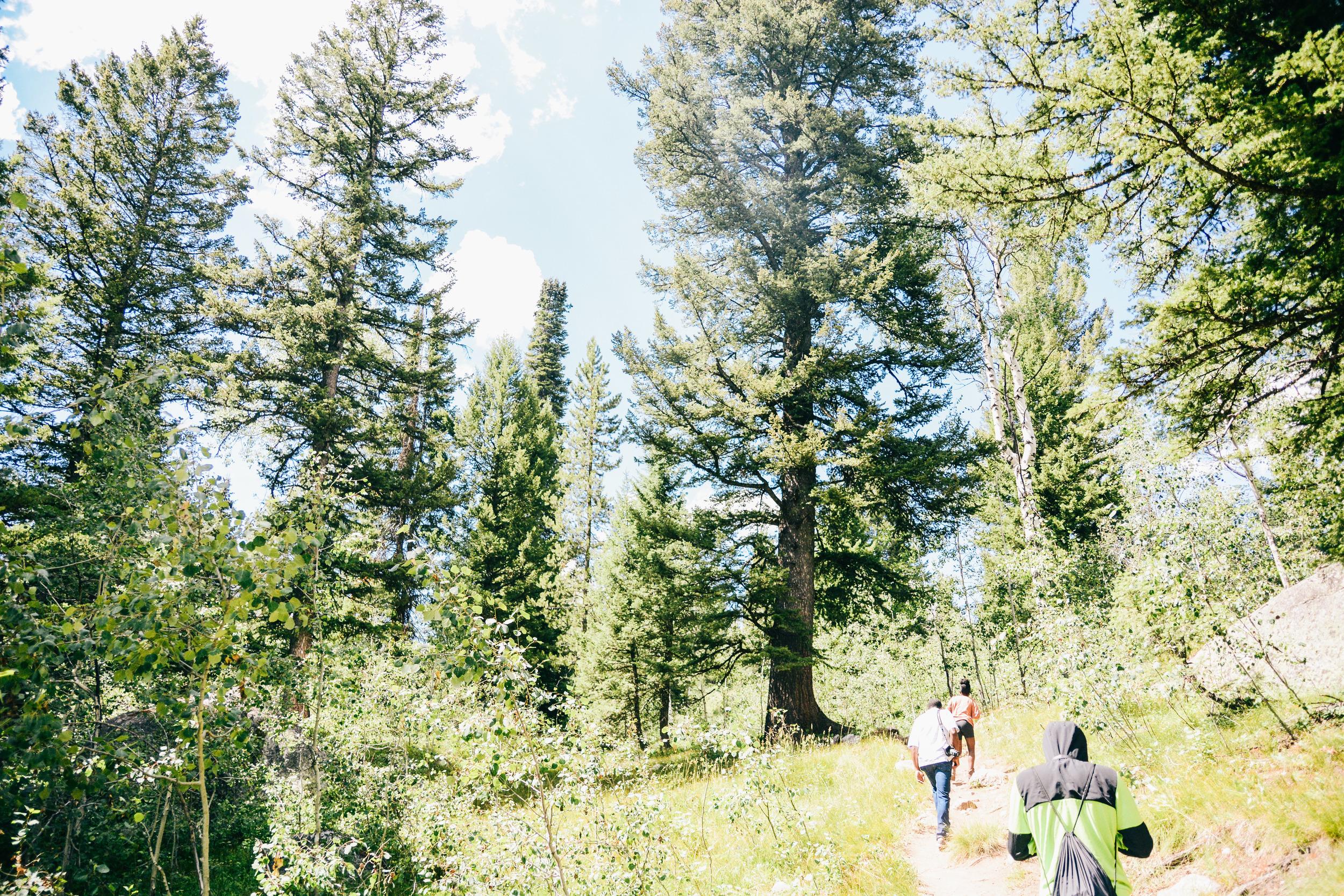 Wyoming-41.jpg