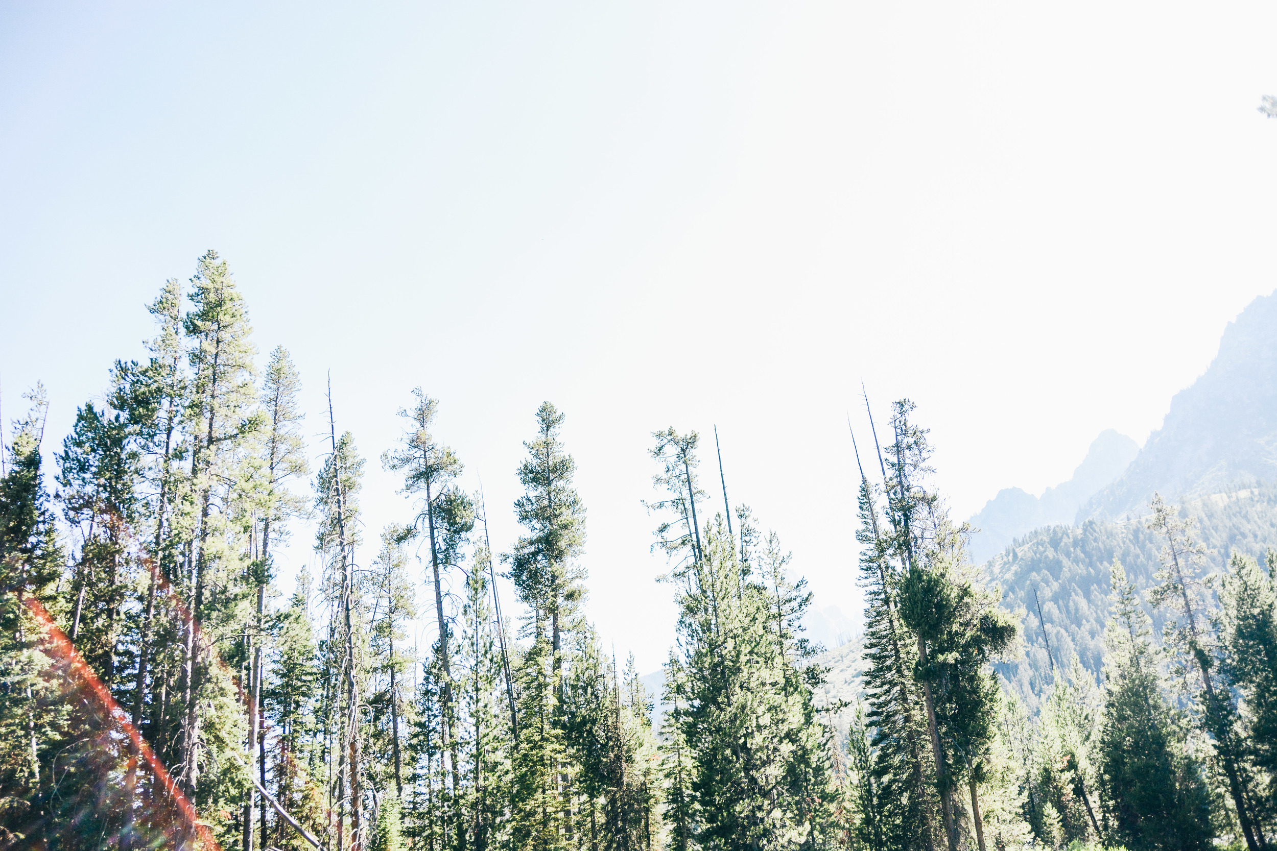 Wyoming-126.jpg