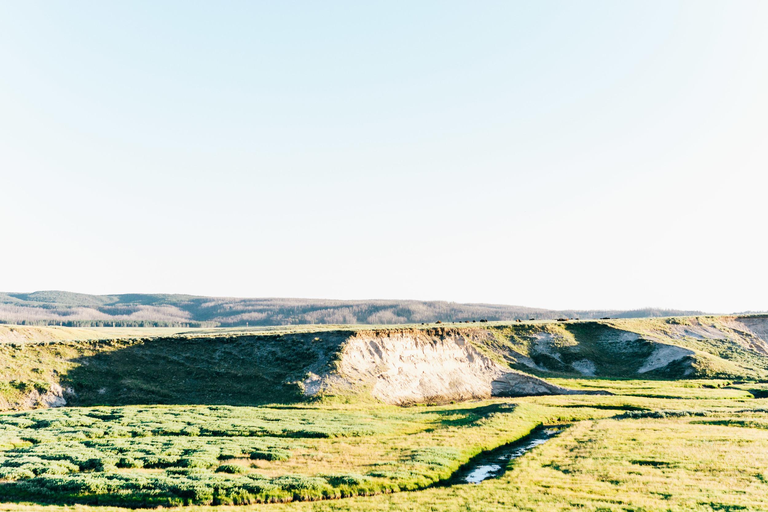 Wyoming-218.jpg