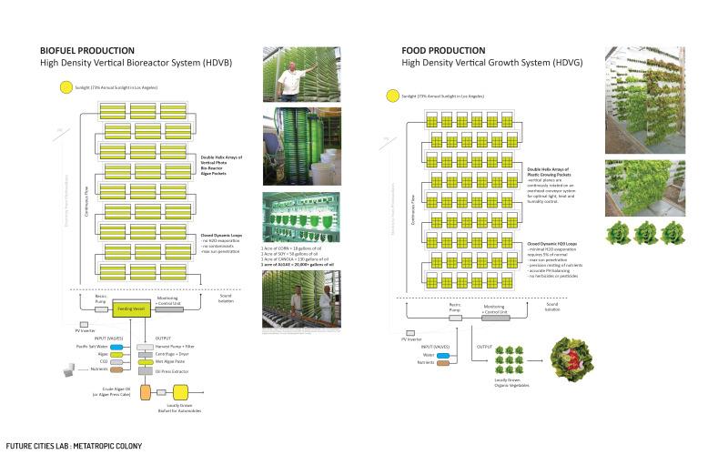 tedx-presentation-8_6_12-p1428.jpg