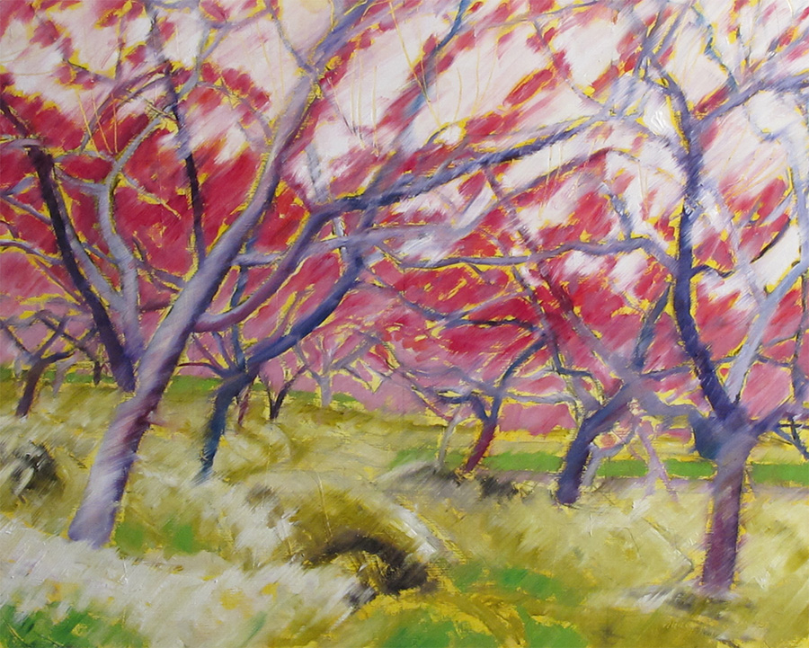orchard umbrella