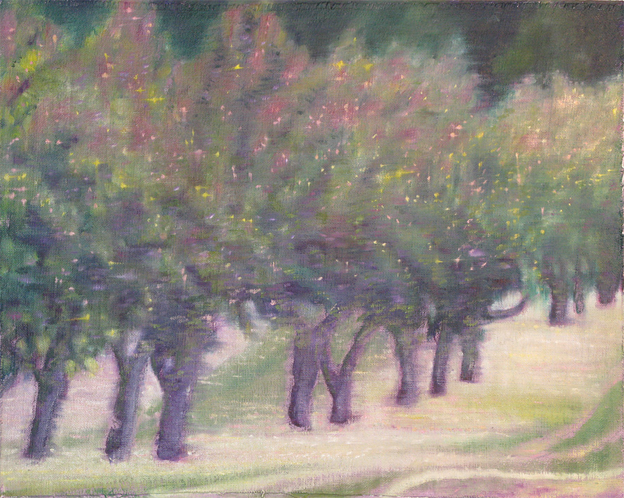 a tiny grove