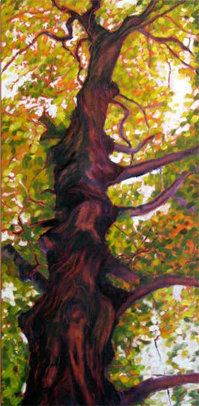 knarled tree portrait