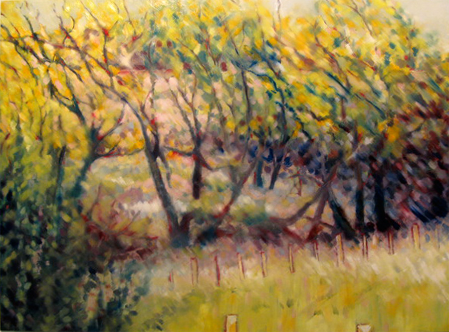 ode to a tree line (2)