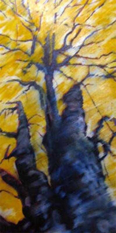 sunburst tree portrait