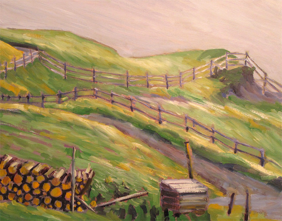 fences and fields