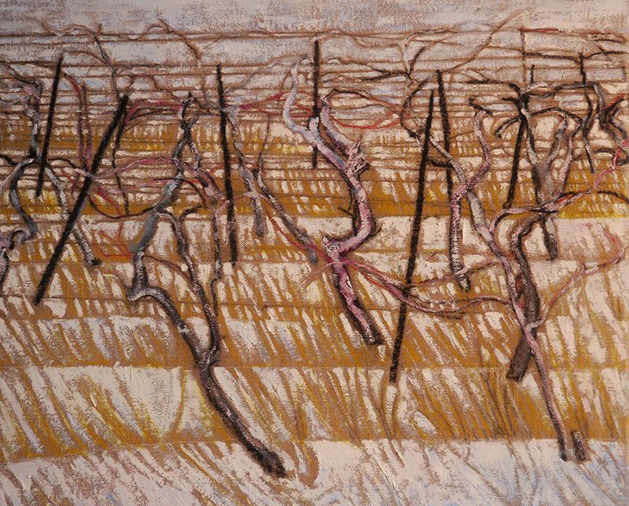 ice vines