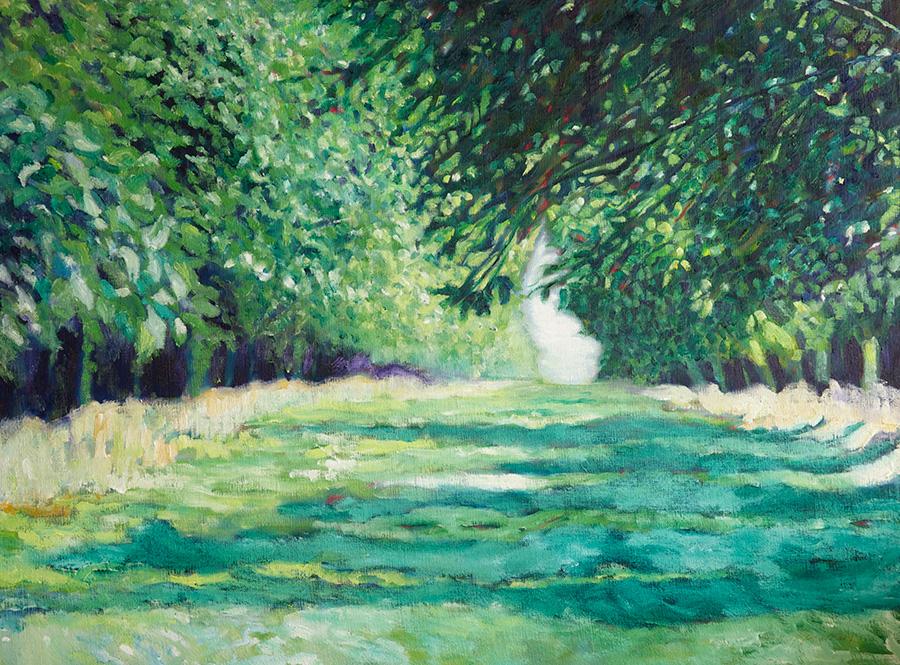 cool orchard shadows