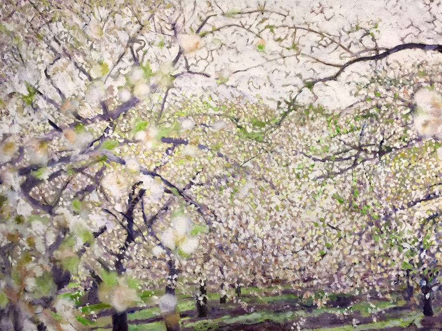through the blossoms
