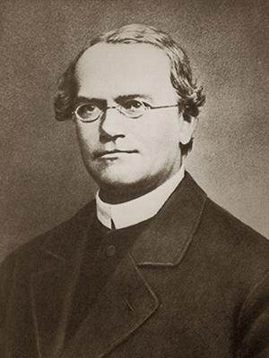 Gregor Johann Mendel, Father of modern genetics