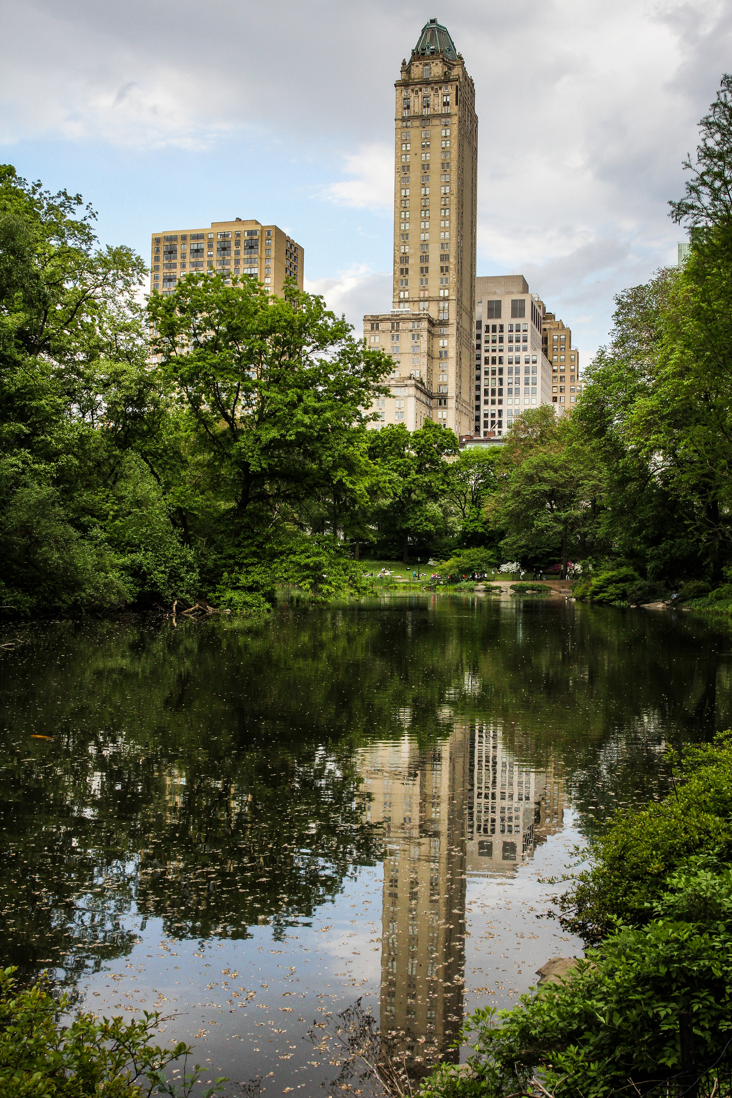 Reflections in central park.