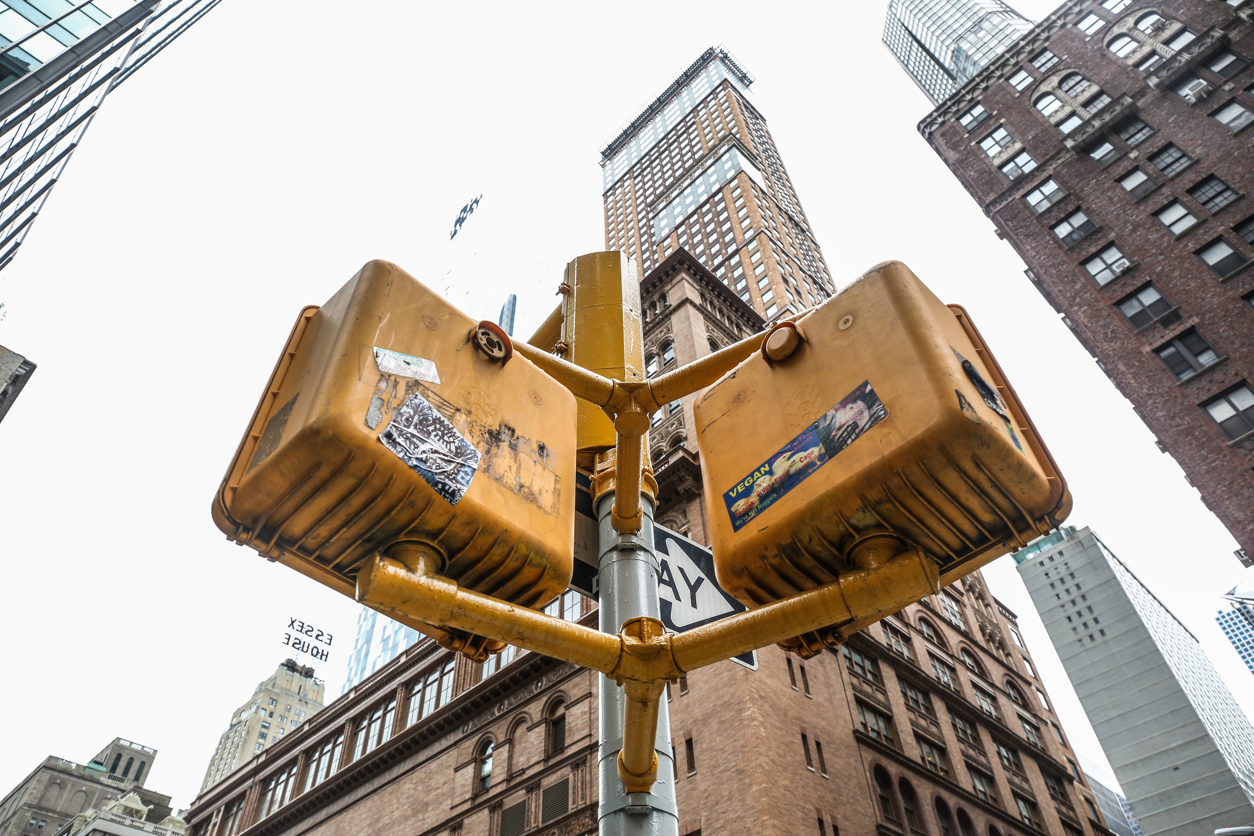 NYC2015schaeffer-13.jpg