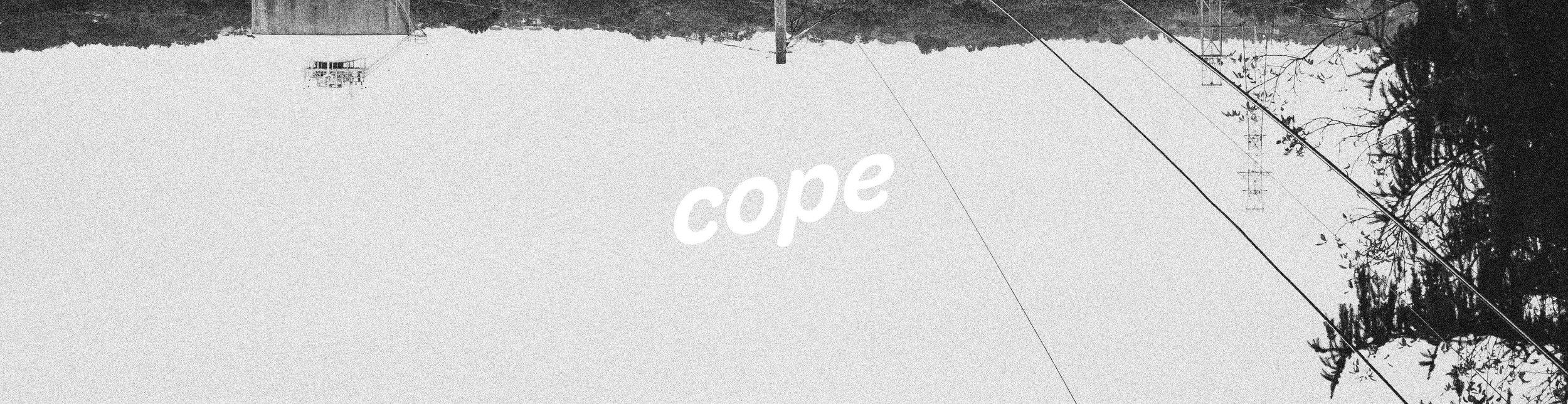 cope_Banner001.jpg