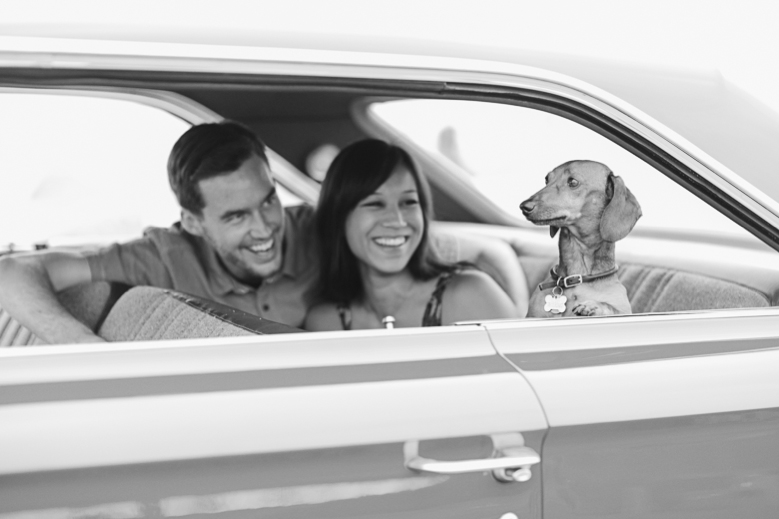 Love your dog? Then why not have them covered when there with you? Some of our plans offer Pet coverage standard.